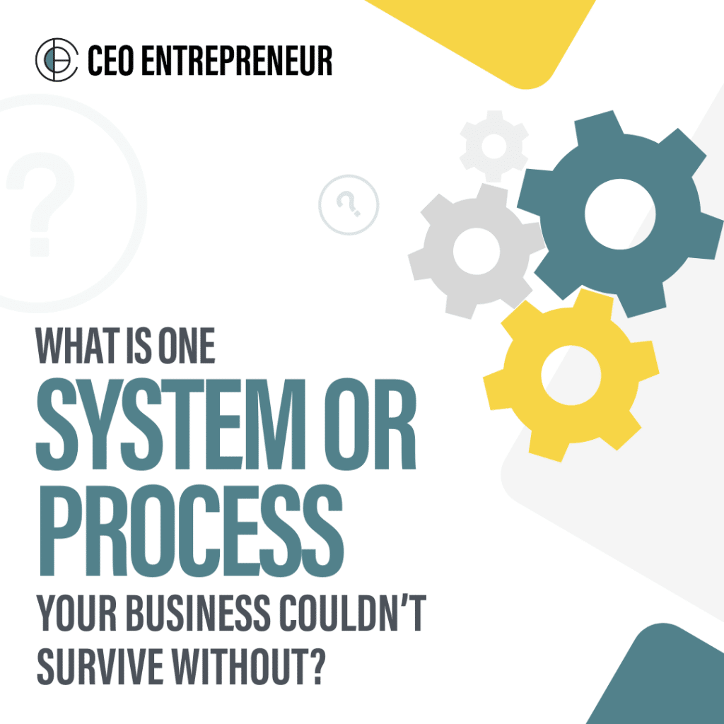 What is one system or process your business couldn't survive without?