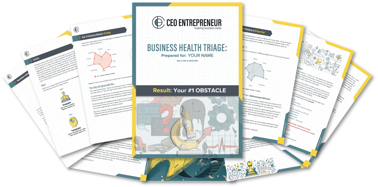 Business Triage Free Customised Report